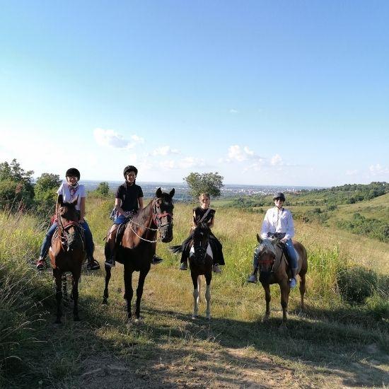 Konji na Fruškoj gori vidikovac