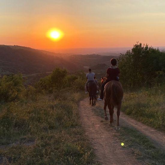 Zalazak sunca sa ledja konja, vidikovac Fruška gora