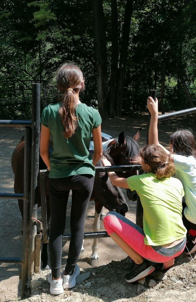 Deca maze konje na letnjem kampu