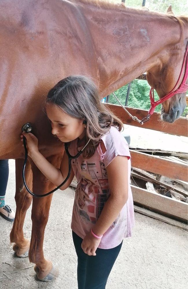 Čas sa veterinarom