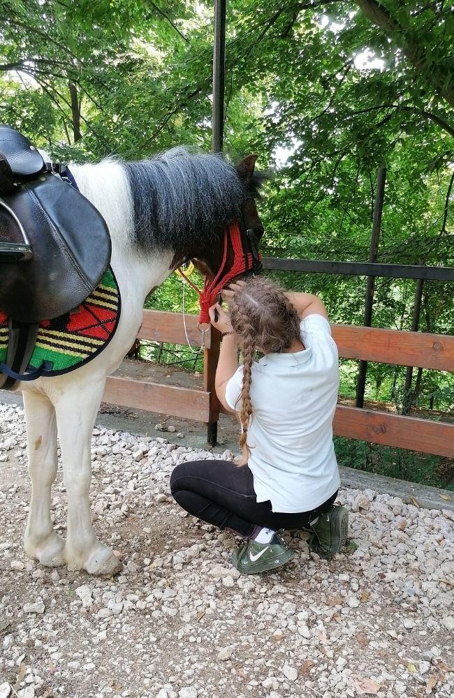 spremanje konja za jahanje