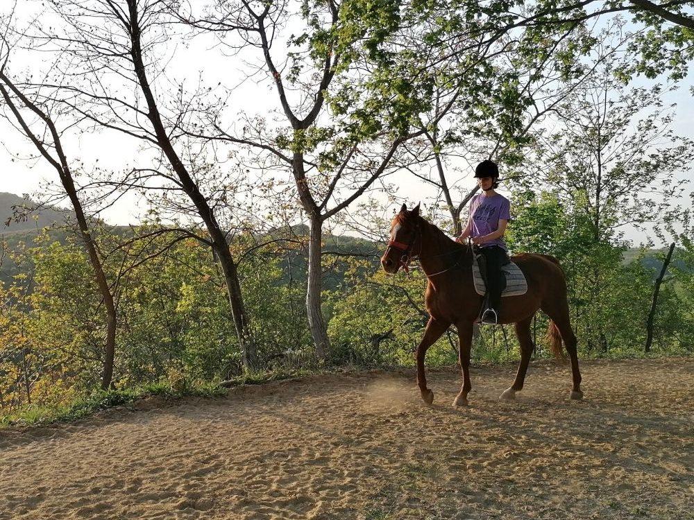skola-jahanja-konja